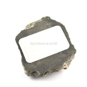 Rock Safe D