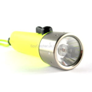 Neon Divers Torch C