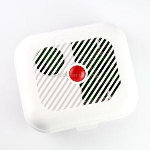 Smoke Alarm Wifi Camera C